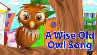 Мудрая старая сова | детские стишки | Детские песни | Little Treehouse | Wise Old Owl Rhyme