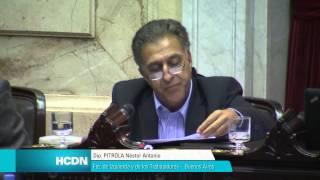 Pitrola interpela a Capitanich en el Congreso // sesión 3/4/14