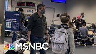 'Sniveling Coward': Cancún Cruz Won't Live Down His 'Walk Of Shame' | The Beat With Ari Melber