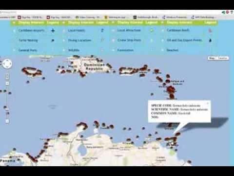 Caribbean Tourism Ecosystem