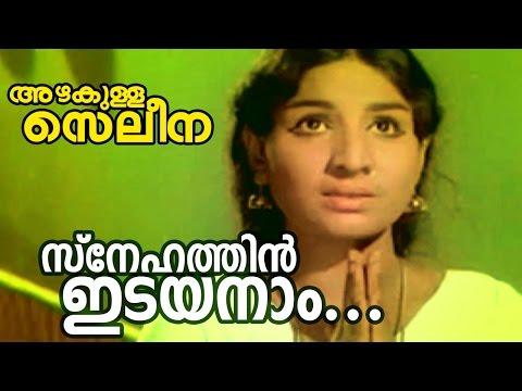 Snehathin Idayanam... | Azhakulla Saleena | Superhit Malayalam Movie Song