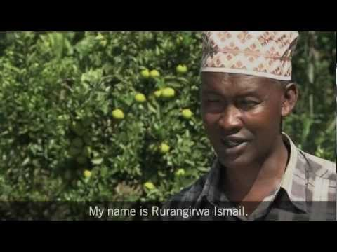 Rwanda Story: Fighting Malnutrition Through Fruit Tree Farming