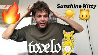 Tove Lo - Sunshine Kitty [ALBUM REACTION]