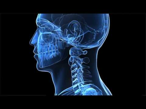 Head and Neck Cancer -- An Introduction