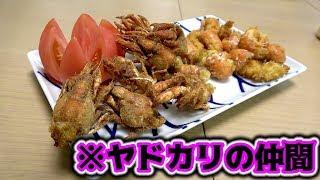 【高級食材】ヤドカリの仲間を2種類の揚げ料理にしてみた!! thumbnail