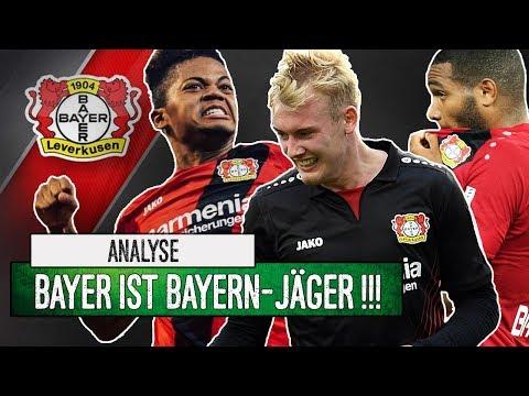 Bayer Leverkusen: Beste Jugendarbeit der Liga! | Analyse