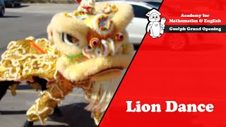 Lion Dance - Grand Opening Ceremony