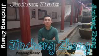 Jincheng Zhang - Guidance I Love You (Instrumental Song) (Background Music) (Official Music Audio)