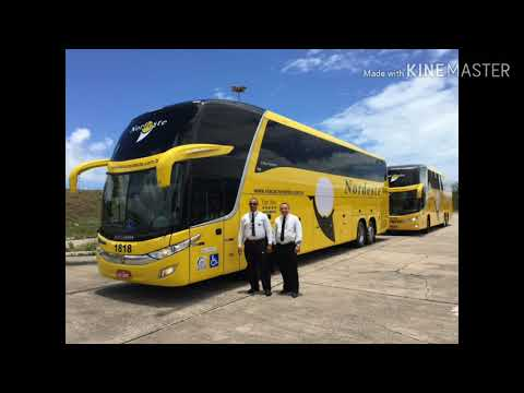 todos-os-Ônibus-da-viação-nordeste-rn-(atualizado)