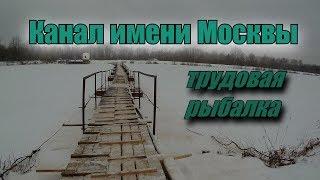 Ловля окуня. Канал имени Москвы. Трудовая рыбалка