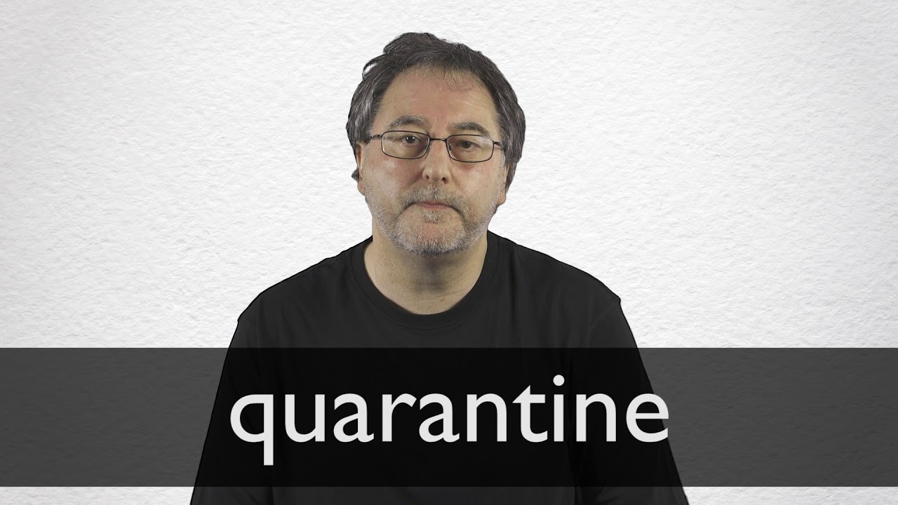 Quarantine Definition And Meaning Collins English Dictionary