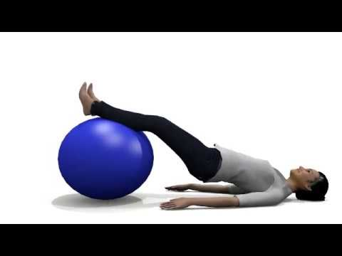 6 Exercise Ball Workout for Back Pain