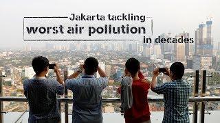 Live: Jakarta tackling worst air pollution in decades你知道空气质量下降会造成什么影响吗
