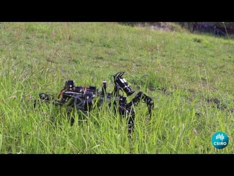 Weaver robot by CSIRO
