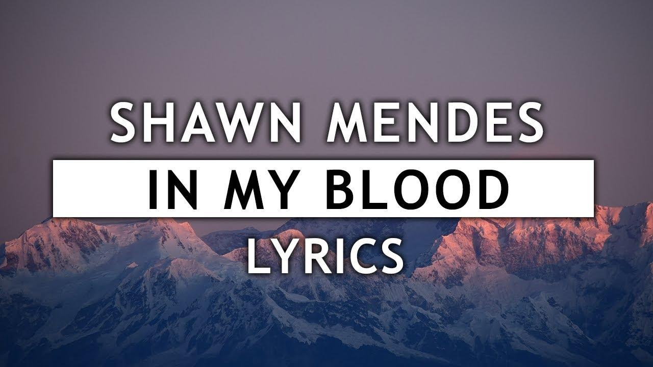 Shawn Mendes In My Blood Lyrics Youtube