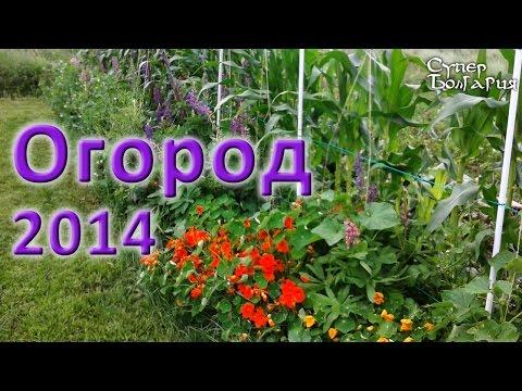 видео: Огород своими руками 2014. Природное земледелие