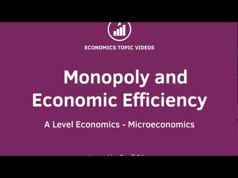 Monopoly and Economic Efficiency