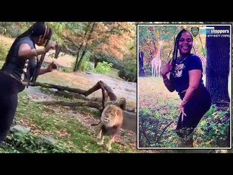 CRob - Woman Who Went Viral Taunting Bronx Zoo Lion Finally Arrested