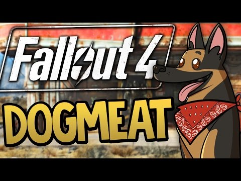 Fallout 4 - Meeting Dogmeat the Dog Companion - Fallout 4 Funny Moments #2