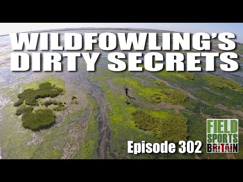 Fieldsports Britain - Wildfowling's Dirty Secrets