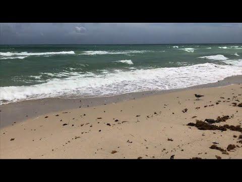 Miami Beach Residents Staying Despite Evacuation