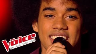 Gloria Gaynor – I Am What I Am   Gwendal Marimoutou   The Voice France 2014   Blind Audition