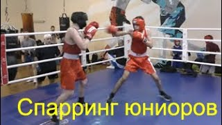 Бокс: спарринг юниоров/Boxing: juniors spar southpaw vs orthodox