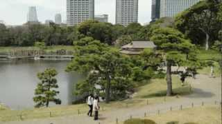 usagi2580 は共有ビデオファイルです。 1654年(承応3年)に甲府藩主の...