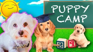 PUPPY GOES TO TRAINING CAMP!! (AMAZING TRANSFORMATION!)