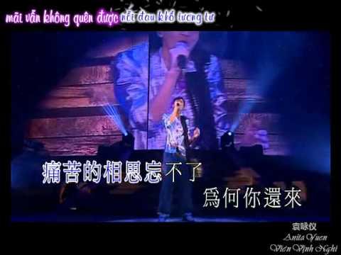 [Việt sub] Concert 2011 - I am Alien - 《新不了情》《如此这般想你》