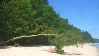Tomas Ledin-En dag på stranden