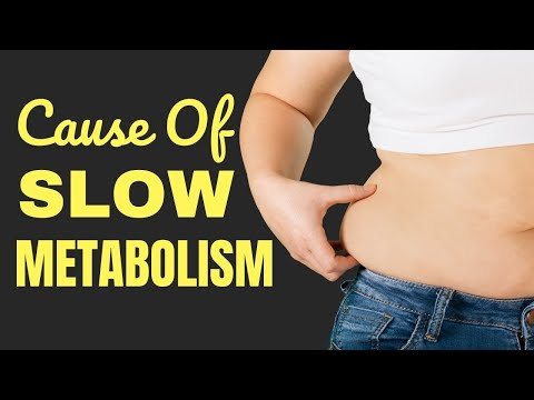 What Might Cause Your Metabolism to Slow Down | Healthy Living Tips