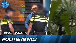 Wow! Politie neemt Adriaans wietplanten in beslag! 😱 | UTOPIA
