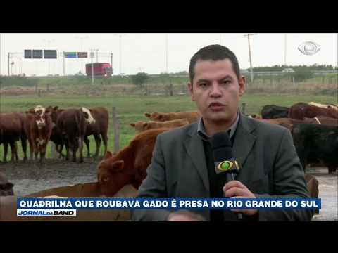 RS: Polícia prende quadrilha que roubava gado