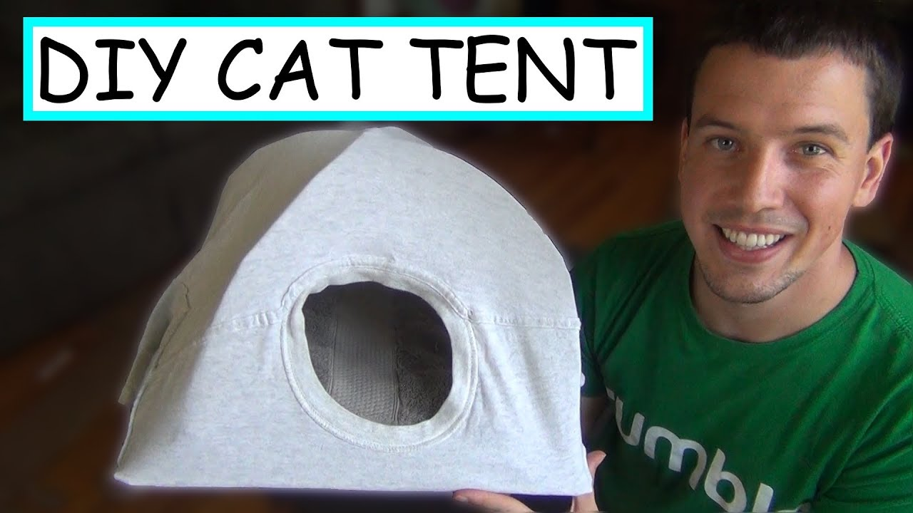Download DIY Cat Tent | EASY + CHEAP
