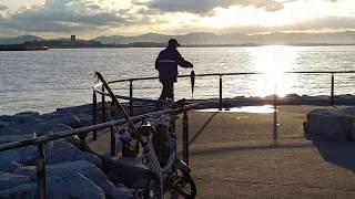 ラグーナビーチの突堤で釣りをして大物のシーバスGet! thumbnail