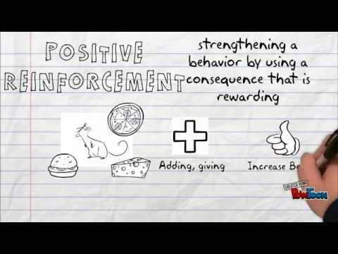 Behaviorism Part 2 - YouTube