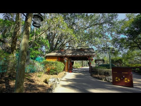 Disney's Abandoned River Country 2018