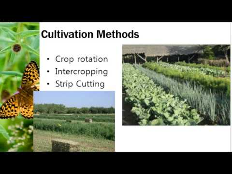 Unit 6, Lecture 6 - Alternatives to Pesticides