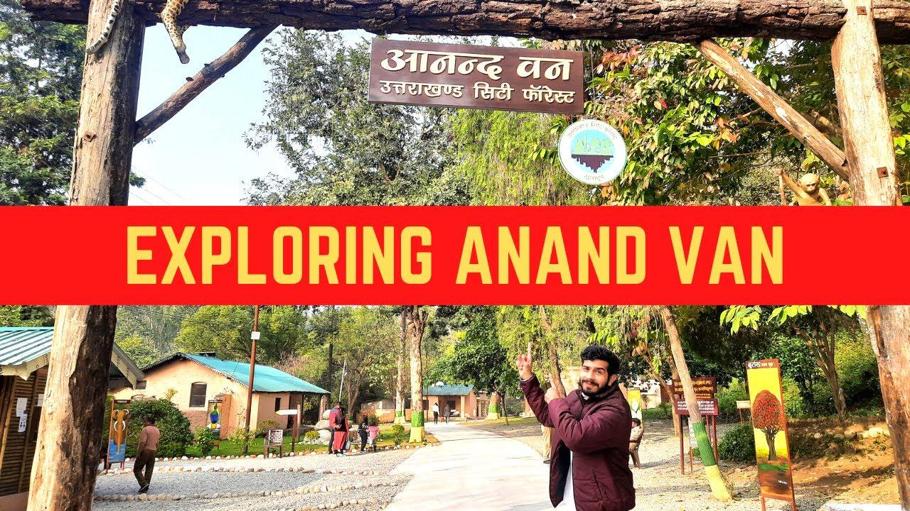Download ANAND VAN   URBAN FOREST DEHRADUN   UTTARAKHAND CITY FOREST   NATURE BEAUTY   FOREST PARK