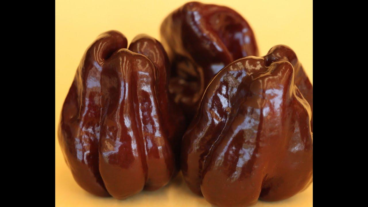 Chocolate Habanero Free Images