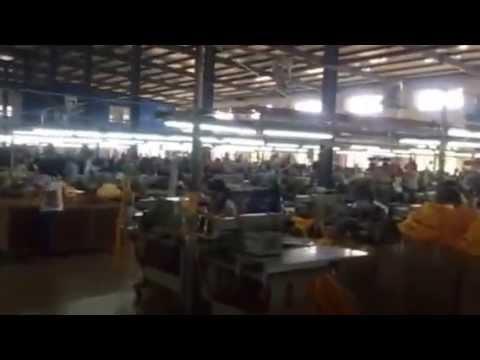 Jiangxi factory.