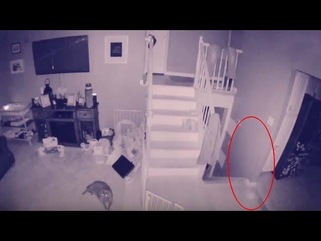 Un hombre graba el fantasma de un niño y su mascota vagando por su casa