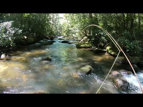 North GA Fly Fishing 2020