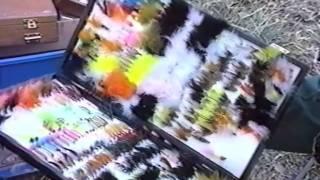 LA PASSION DES MOUCHES 2 - la mouche qui fait mouche