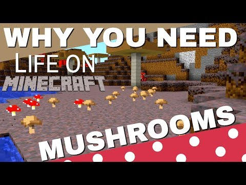 Everything About The Mushroom In Minecraft: Why Mushrooms Are REALLY Important (Life On Minecraft)