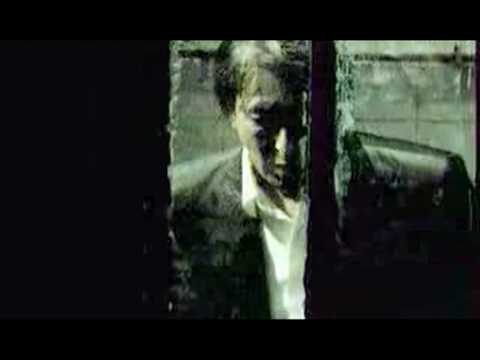Alain Bashung - La Nuit Je Mens Lyrics | MetroLyrics