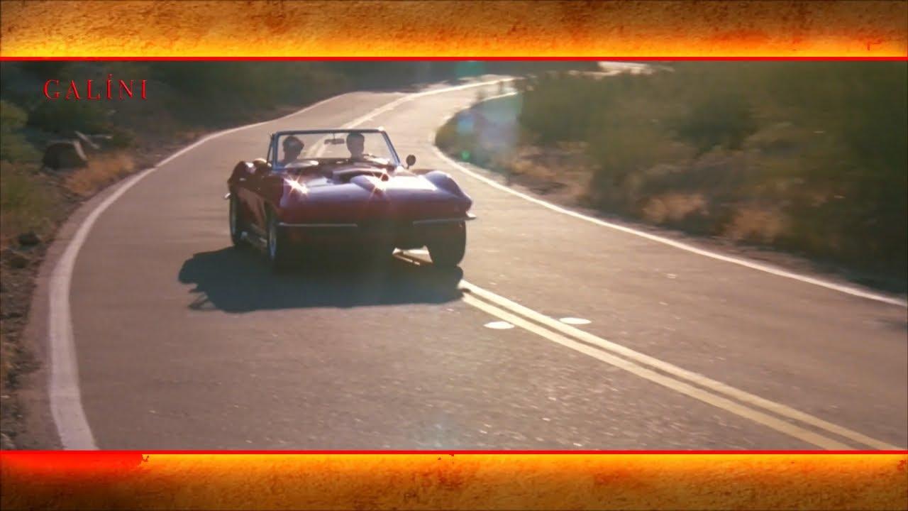 Download Sean Young☆ HD Nicolas Cage FIRE BIRDS '90 Widescreen