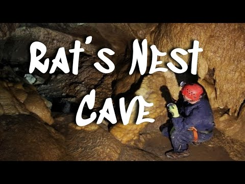 Exploring Rat's Nest Cave || Canmore Cave Tours