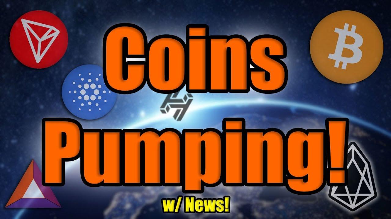 🎬 Altcoin Daily: Bitcoin Dumps! But Major Coin News as Altcoins Race Past Bitcoin Ahead of Halving!